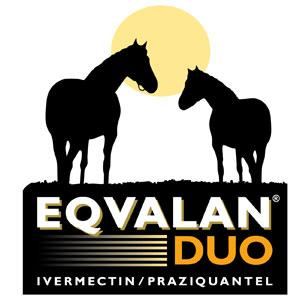 Eqvalan-Duo-Horse-Worming