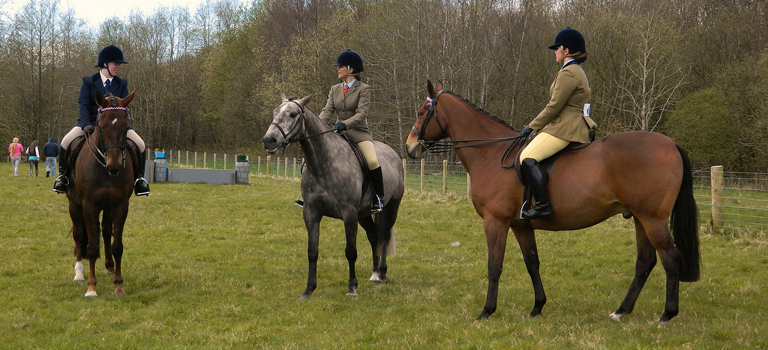 Horses – Top Safety Tips for On the Ground & In the Saddle