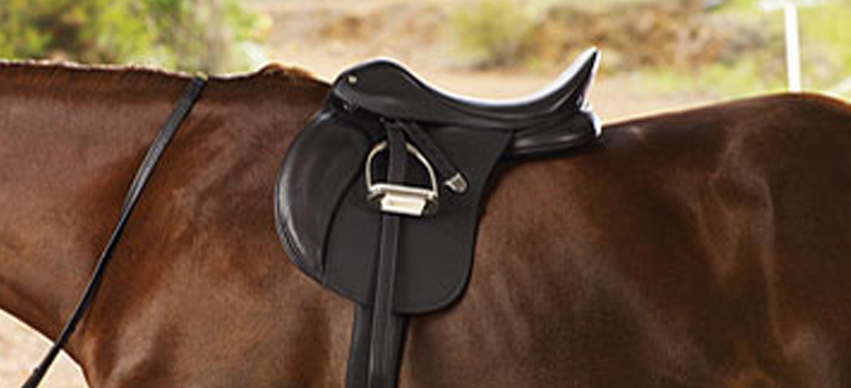 Saddle Fitting, getting it right for you and your horse