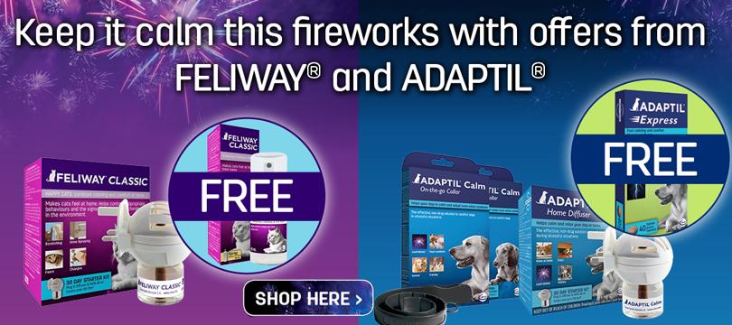 fireworks-offer